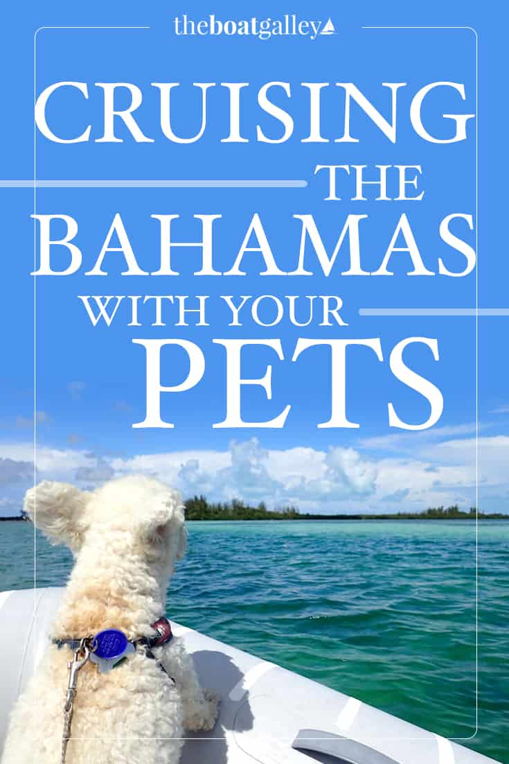 getting a bahamas pet permit | the boat galley